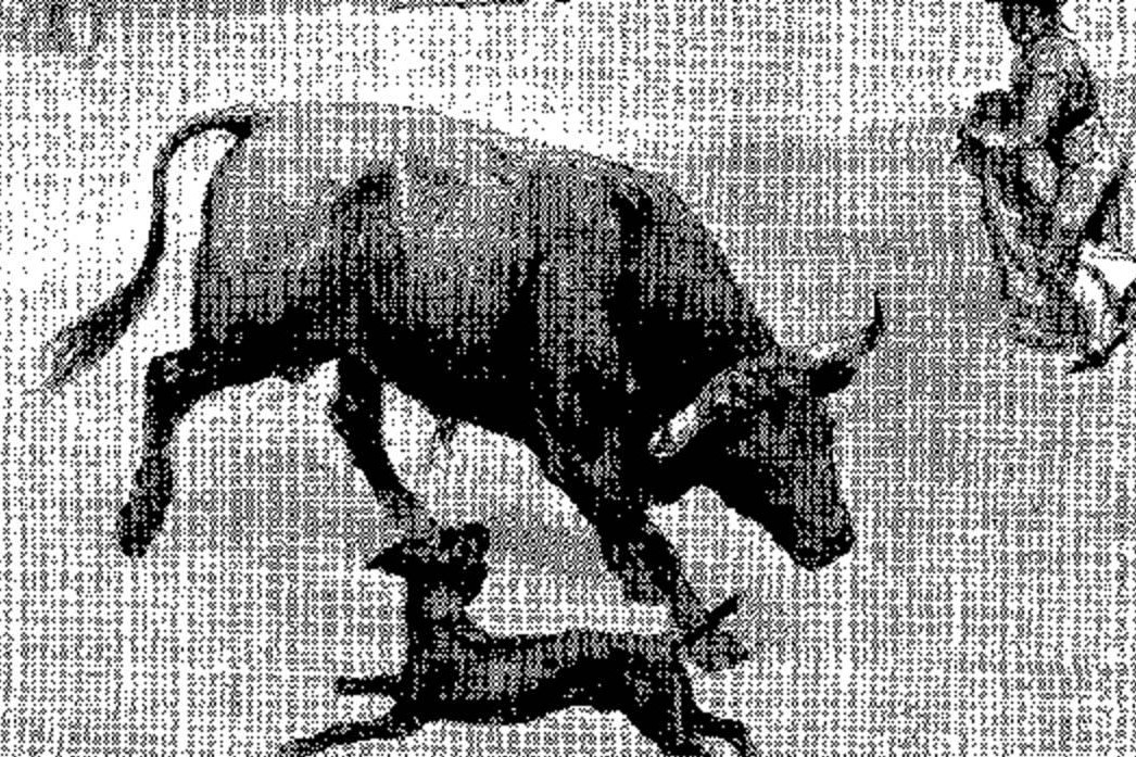 El perro torero de Madrid